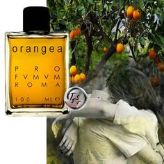 Profumum Roma Orangea (2015) {New Fragrance} http://www.mimifroufrou.com/scentedsalamander/2015/03/profumum_roma_orangea.html