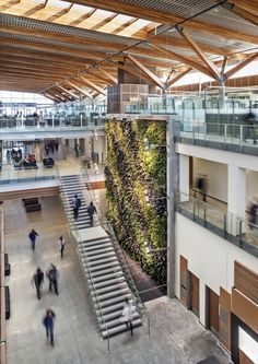 University of Windsor - use of timber for roof structure and its sustainable with the use of a living wall