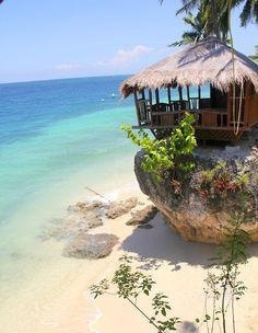 Amazing Tropical Beach Oslob - Philippines