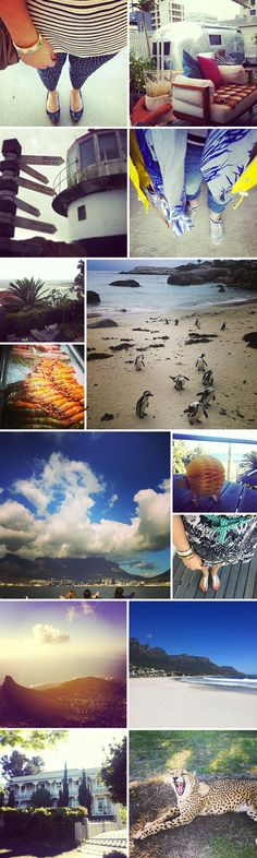 My Month: April in South Africa (Cape Town, Garden Route and Eastern Cape Safari)