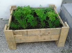 A beautiful planter for herbs reusing the wood from a pallet ! Idea sent by Talia Goldberg ! #PalletPlanter, #RecycledPallet