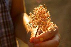 La bonté est le véritable symbole de la supériorité de l'être humain. Cependant, si elle n'est pas accompagnée d'action, elle ne sert à rien. Nous connaissons tou-te-s ce type de personnes qui parlent beaucoup et font peu, des profils aux mots nobles et aux actes égoïstes. Commençons donc à changer le monde, à traduire en …