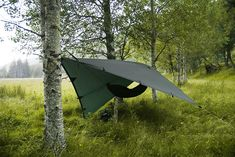 DD hammock and tarp set up in Scotland