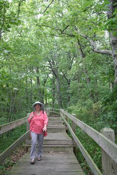 Mississippi Valley: Mississippi Palisades State Park. The Great River Road follows the Mississippi on the Illinois/Iowa border allowing travellers to explore the Upper Mississippi Valley...including this lovely state park with its views and walkways
