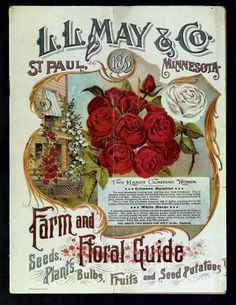 The 1896 L May S Farm And Fl Guide Features Two Climbing Roses Ropriately Named