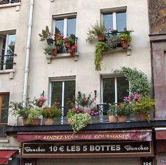 Postcard from Paris 6 - Flowering balconies - San Jose Gardening | Examiner.com