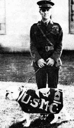 The 1st United States Marine Corps Bulldog Mascot, Chesty Pullerton.