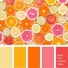 Color Palette - Million Shade Orange Palette, Orange Color Schemes, Orange Color Palettes, Warm Colour Palette, Color Combos, Complimentary Color Scheme, Bright Color Schemes, Warm Colours, Paleta Pantone