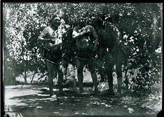 Skidi Pawnee Indian Ceremony, Pawnee Indians, celebration of Pawnees, Pawnees perform under tent, Skidi. Star Bundle ceremony 1887 Native American History, Native American Indians, Native Americans, American Art, Seminole Indians, Plains Indians, Duke City, Native Place, Indian Tribes