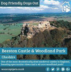 Beeston Castle Dog Friendly