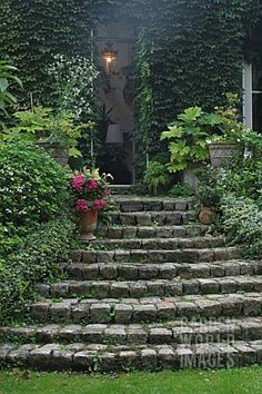 STAIRS_FLOWERS_RAMPE_COUGREENE_OF_IVY_POT_CONTAINER__HORTENSIA_HYDRANGEA__GARDEN_OF_LA_SOULOIRE_33