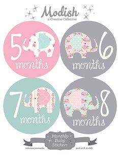 GRATIS regalo mensual pegatinas de bebé elefante bebé bebé