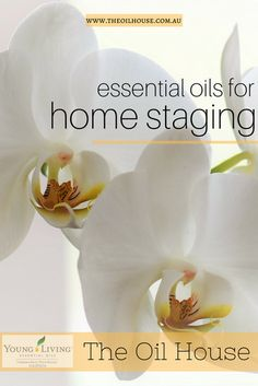 This list of Essential Oils is for your home. From having guests over for dinner to staging your home for sale. With scents for home staging, scent to mask odors, and the all important open house.