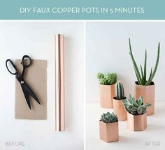 Fake out your plants with these faux copper pots.