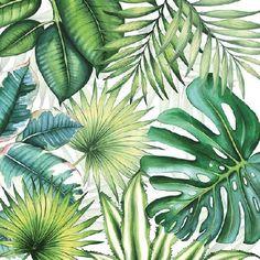20er Pack Servietten Tropische Blätter, Monstera 33 x 33 cm Bild 1