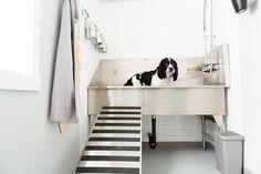 "Custom ""dog grooming sinks,"" also standard size models."