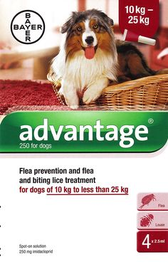 Advantage 250 for Dogs *** Be sure to check out this awesome product. (This is an affiliate link and I receive a commission for the sales)