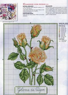 [rosas005-718397.jpg]