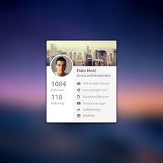 Mini Profile .PSD  by Eldin Heric