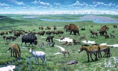Pleistocene America: Pleistocene: geological epoch from about 2.6 may to 11,700 years ago, spanning the world's recent period of repeated glaciations; only 15-20,000 years ago valley glaciers retreated to their cirques