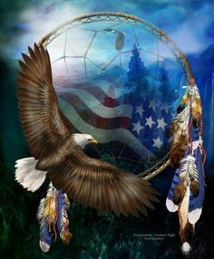 American dream catcher