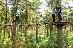 Go ape treetop adventure (rockville MD)