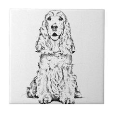Cocker spaniel small square tile