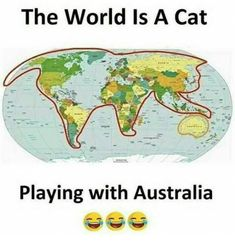 Image result for the world looks like a cat playing with australia