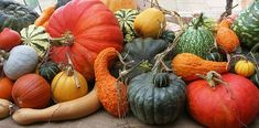 Happy first official day of Fall! Cool Designs, Pumpkin, Vegetables, Autumn Fall, Food, Graphics, Happy, Pumpkins, Graphic Design