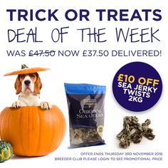 **Deal of the Week** Save £10 on Sea Jerky Twists 2Kg RRP £47.50 NOW: £37.50 Ends 03/11/16 http://www.fish4dogs.com/Products/sea-jerky-fish-twists.aspx #Fish4DogsOffers #Halloween #BestDogDentalTreat