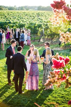 vineyard-wedding-coc
