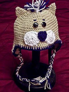 BYU cougar hat.