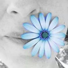 valentina black blue heart