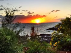 See the best things to do with 6 days in Kauai with kids.