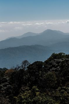 Mountains in Doi inthanon national park in Chiang Mai northern Thailand Stefan Johansson, Doi Inthanon National Park, Northern Thailand, Chiang Mai, Dawn, National Parks, River, Mountains, Nature