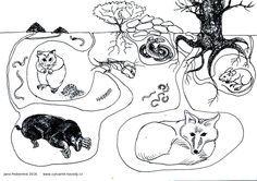 Tree Of Life Art, Fall Art Projects, Kids Nursery Rhymes, Animal Tracks, Snow Fun, Animal Habitats, Winter Crafts For Kids, Art Programs, Autumn Art