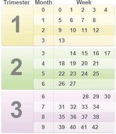 I always forget the months! How pregnant am I? Pregnancy by weeks, months, and trimesters | BabyCenter