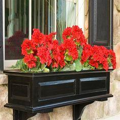 Rectangle Wood Raised-Panel Savannah Window Box - Planters at Hayneedle Wood Window Boxes, Window Box Flowers, Flower Boxes, Window Frames, Black Windows, Wood Windows, Front Windows, Front Porch, Rectangular Planters