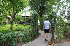 Peace Resort, Samui