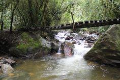 Es un paseo de 4.8 kms. hasta una cabaña. Finalizando el camino por entre los pastos, el lugar soleado y luminoso, se transforma en penumbra donde la humedad, la vegetación y el sonido de la Quebrada Las Mirlas se vuelven compañeros de viaje. Los puentes colgantes son una constante en la ruta.