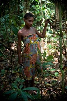 Jungle of the Central-African Republic