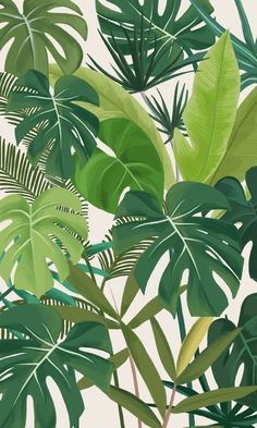 Tropical Party, an art print by marrie green - INPRNT This is a gallery-quality giclée art print on cotton rag archival paper, printed with archival inks. Plant Wallpaper, Tropical Wallpaper, Flower Wallpaper, Wallpaper Backgrounds, Palm Leaf Wallpaper, Screen Wallpaper, Art Tropical, Tropical Design