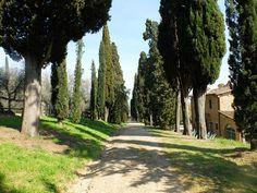 22 Travel Hacks for Visiting Florence
