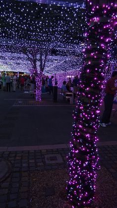 Christmas in #Canberra, #Australia http://www.travelmagma.com/australia/things-to-do-in-canberra