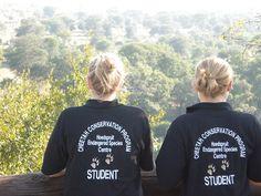 Aviva Volunteers. Volunteers at the Hoedspruit Endangered Species Centre.