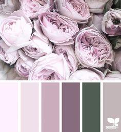 Flora palette цвета design seeds, farver и soveværelse Color Palette For Home, Colour Pallette, Colour Schemes, Color Patterns, Color Combinations, Design Seeds, Ecommerce Webdesign, Color Concept, Corporate Identity Design