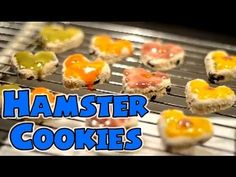 """""""ICED"""" HAMSTER COOKIES 