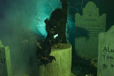 Graveyard Cat by Patty