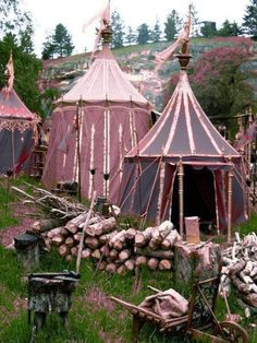 Narnia camping in style! Glamping, Zelt Camping, Cool Tents, Gypsy Caravan, Chronicles Of Narnia, Larp, Middle Ages, Gazebo, Canopy