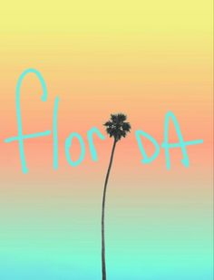 A little love for the #sunshinestate. #Florida